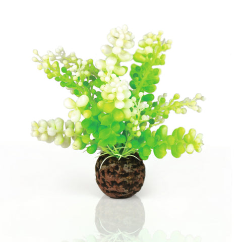 Oase biOrb Artificial Plant Green Caulerpa 12cm