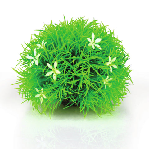 Oase biOrb Topiary with Daisies (8cm)