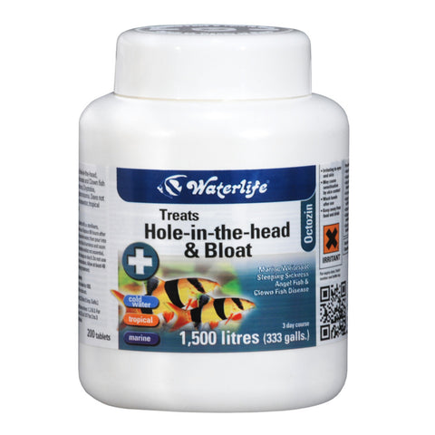 Waterlife Hole-in-the-head & Bloat 200 Tablets