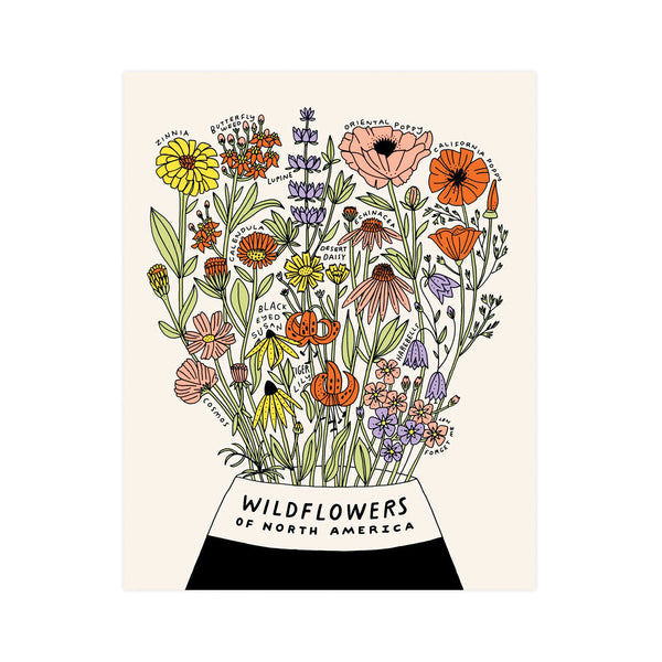 Wildflowers of North America 11x14 Botanical Print