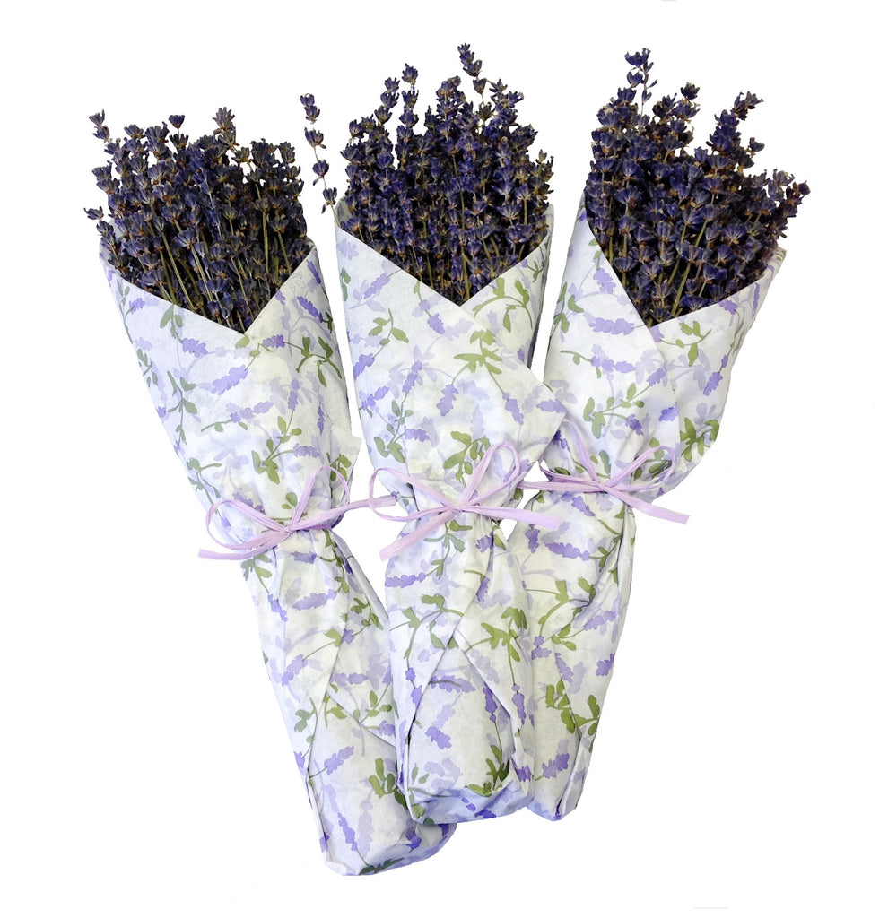 French Lavender In Tissue - set of 6 - Bella Marie