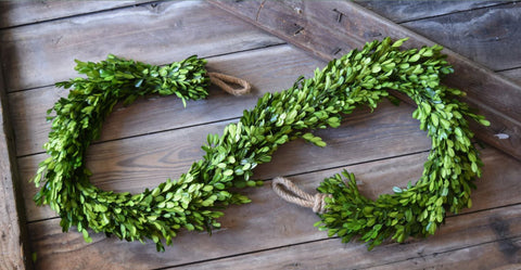 PRESERVED BOXWOOD COUNTRY MANOR GARLAND - DRAPERY - 71""