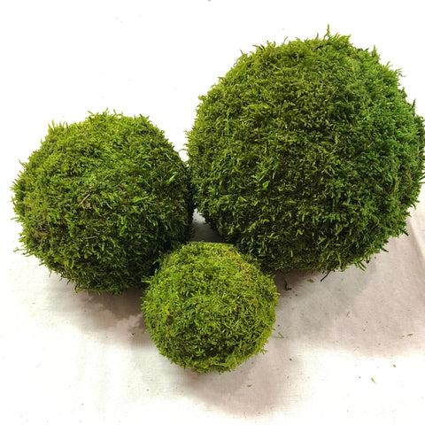 "Green Moss Balls - Preserved Sheet Moss - 4"", 6"" and 8"""