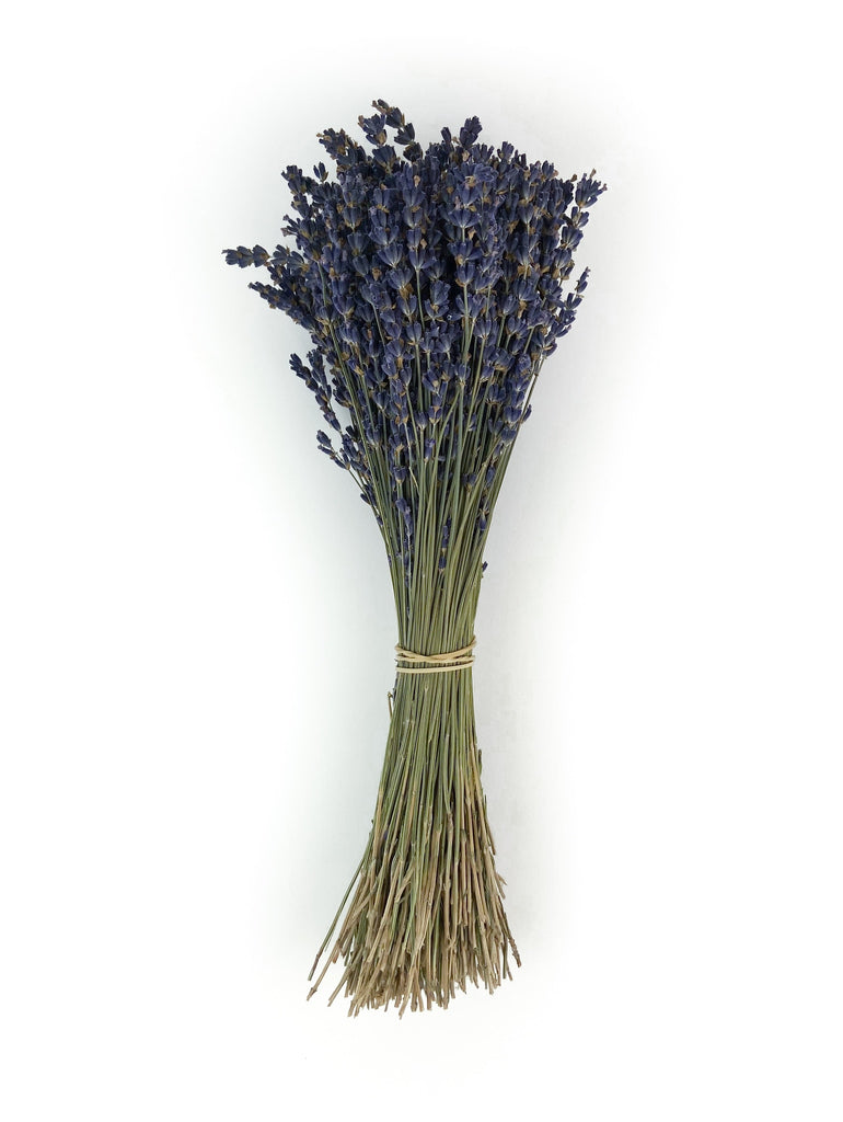 French Lavender - Set of 3 Bunches