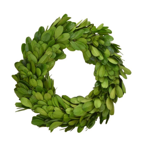 Preserved Boxwood Round Wreath - 6 Inches (Set of Two)