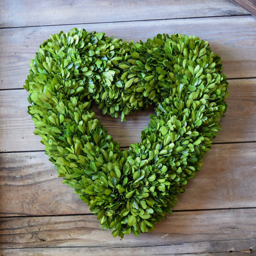Preserved Boxwood Heart Wreath - 16 Inch - Bella Marie