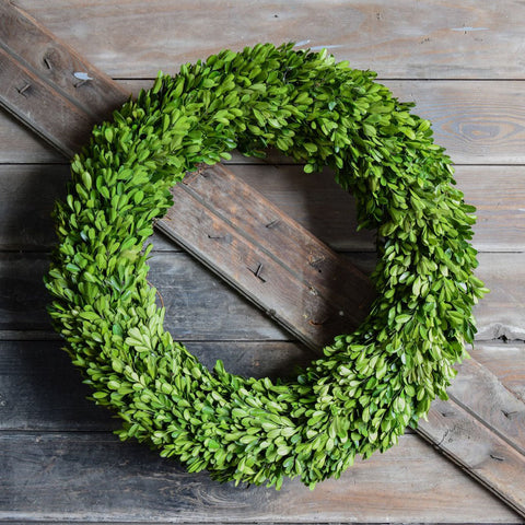 Preserved Boxwood Round Wreath - 24 Inch