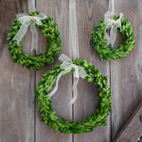 Preserved Boxwood Round Wreath - 3 Piece Set - Bella Marie