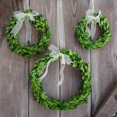 Preserved Boxwood Round Wreath - 3 Piece Set