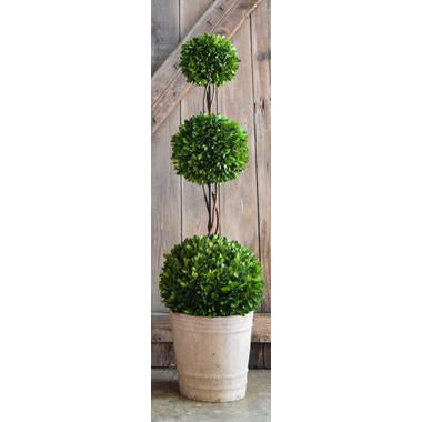 Preserved Boxwood Triple Ball Topiary - 43 Inch