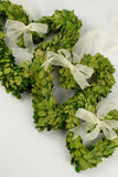 Preserved Boxwood Heart Wreath Set - Bella Marie - 3