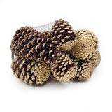Pine Cone Martima - Burg/Gold Tipped - 12 Pieces