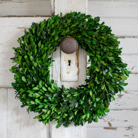 Preserved Boxwood Garden Wreath - 14 Inch