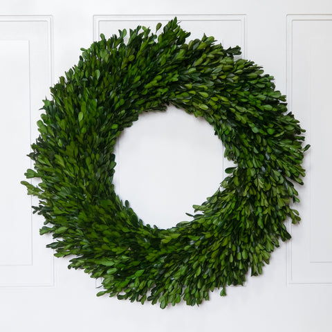 Preserved Boxwood Garden Wreath - 22 Inch