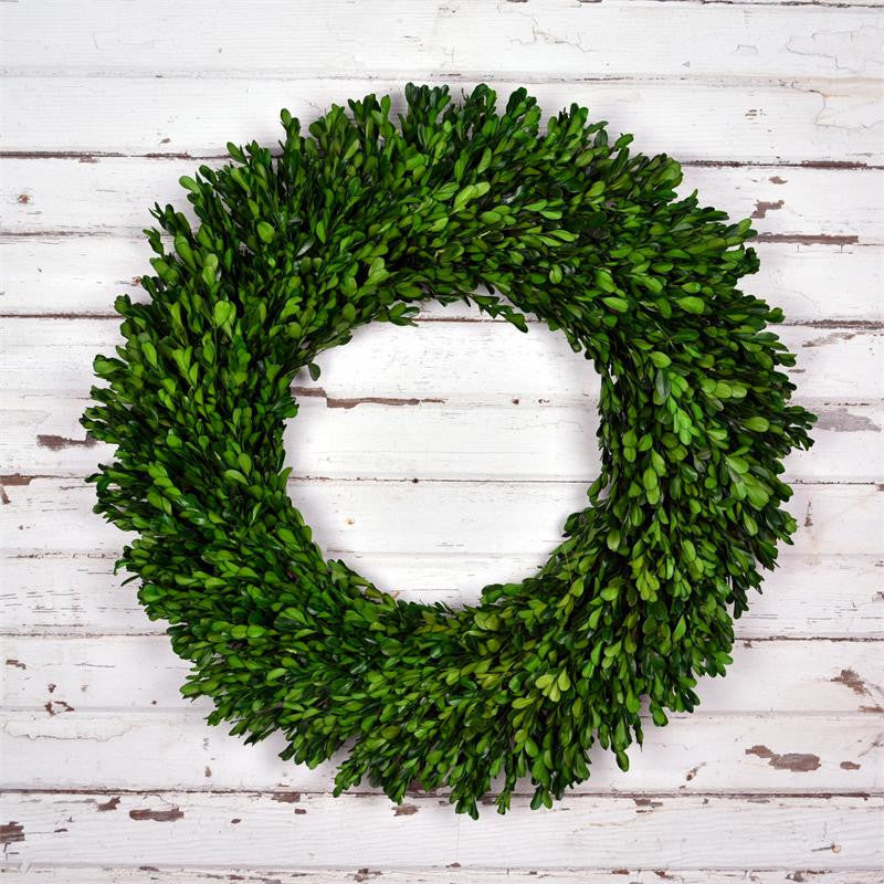 Preserved Boxwood Garden Wreath - 22 Inch - Bella Marie - 1