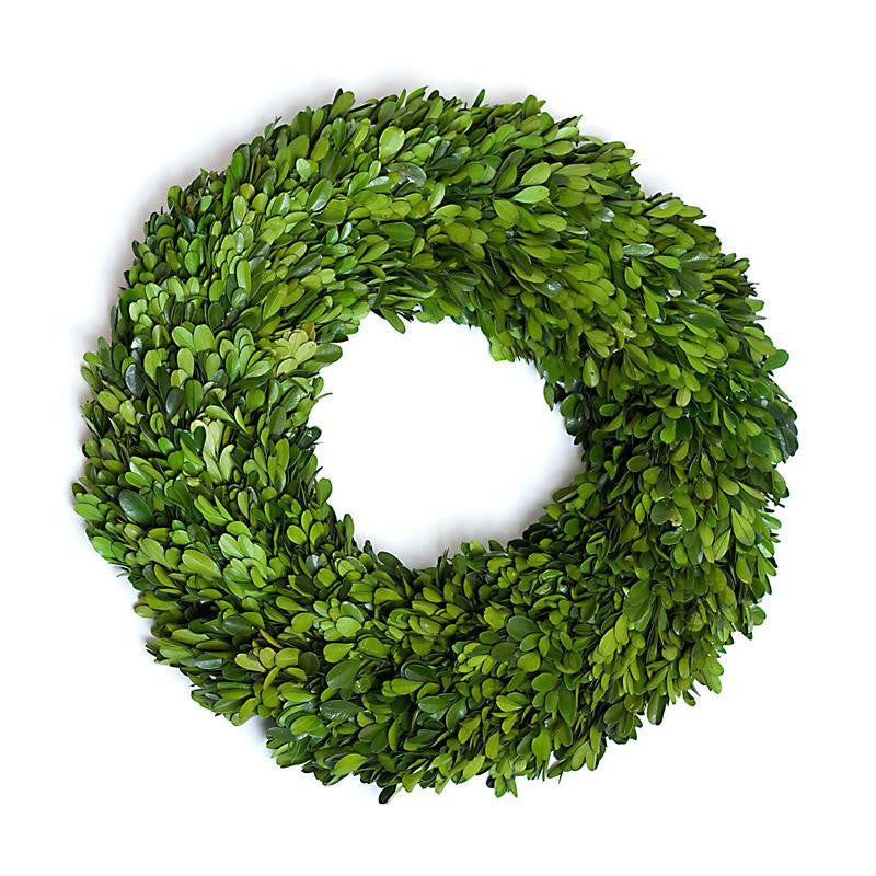 Preserved Boxwood Round Wreath - 16 Inch - Bella Marie - 1