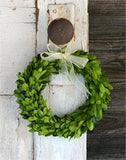Preserved Boxwood Round Wreath - 8 Inch - Bella Marie - 1