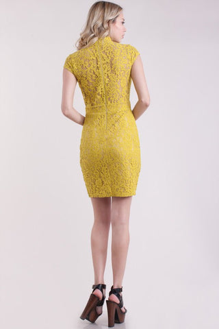 Tea Leaf Lace Dress