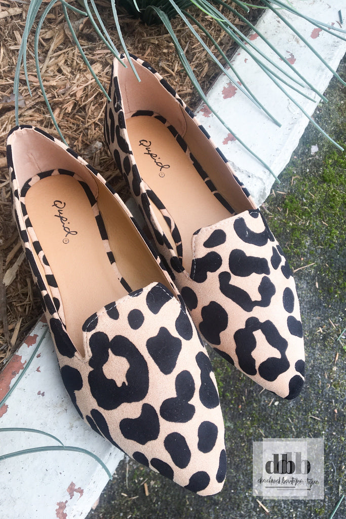 City Chic Leopard Loafers