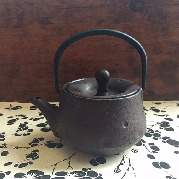 Japanese Style Cast Iron Teapot • Dimples
