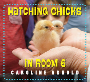 Launch Party for Hatching Chicks in Room 6: The Book has Hatched!