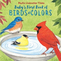 Baby's First Book of Birds & Colors book cover