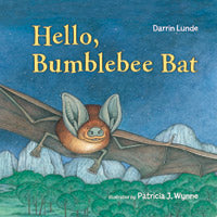 Hello Bumblebee Bat Board Book