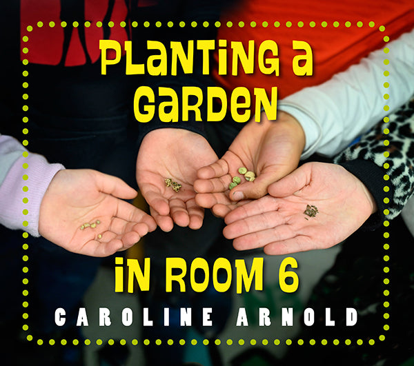 Planting a Garden in Room 6