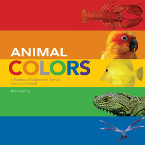 Animal Colors Board Book cover image