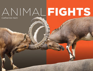 Animal Fights book cover image