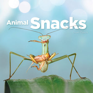 Animal Snacks book cover image