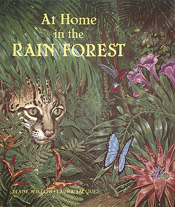 At Home in the Rain Forest