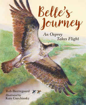 Belle's Journey: An Osprey Takes Flight book cover