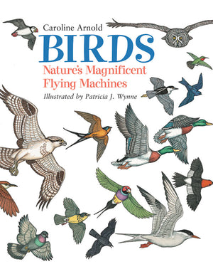 Birds: Nature's Magnificent Flying Machines book cover