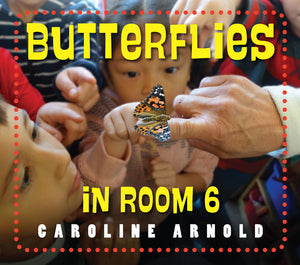 Butterflies in Room 6 book cover