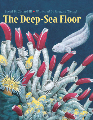 The Deep-Sea Floor book cover image