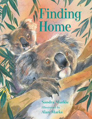 Finding Home book cover