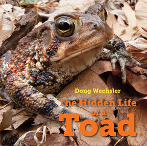 The Hidden Life of a Toad book cover