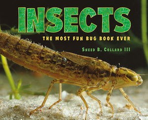 Insects book cover