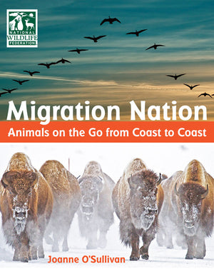 Migration Nation: Animals on the Go from Coast to Coast