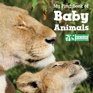 My First Book of Baby Animals book cover