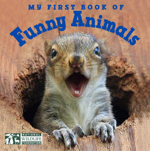 My First Book of Funny Animals book cover