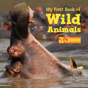 My First Book of Wild Animals book cover