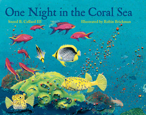 One Night in the Coral Sea book cover