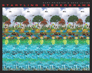 Startling Stereograms book cover