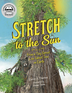 Stretch to the Sun book cover