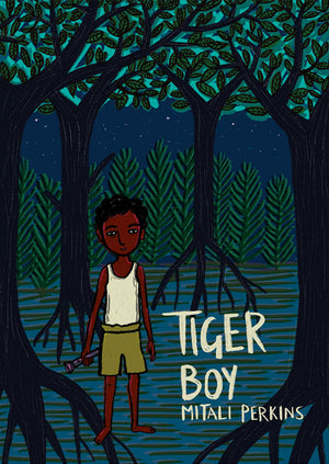 Tiger Boy book cover