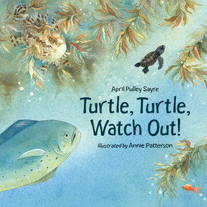 Turtle, Turtle, Watch Out! book cover