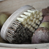 Vegetable Scrub Brush