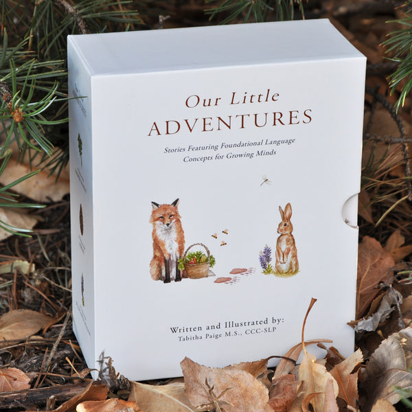 Our Little Adventures Board Books